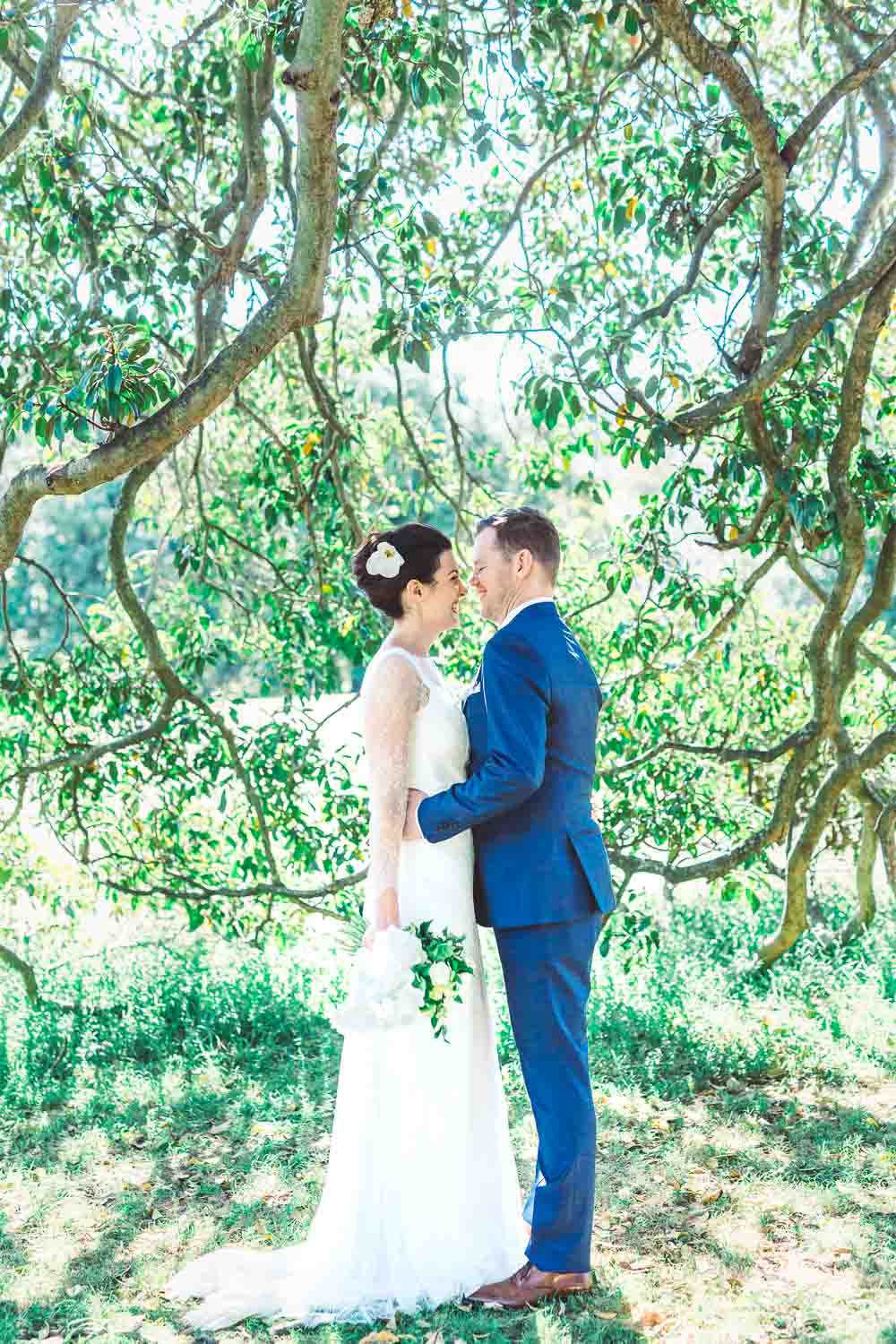 bride and groom under a fig tree in centennial park