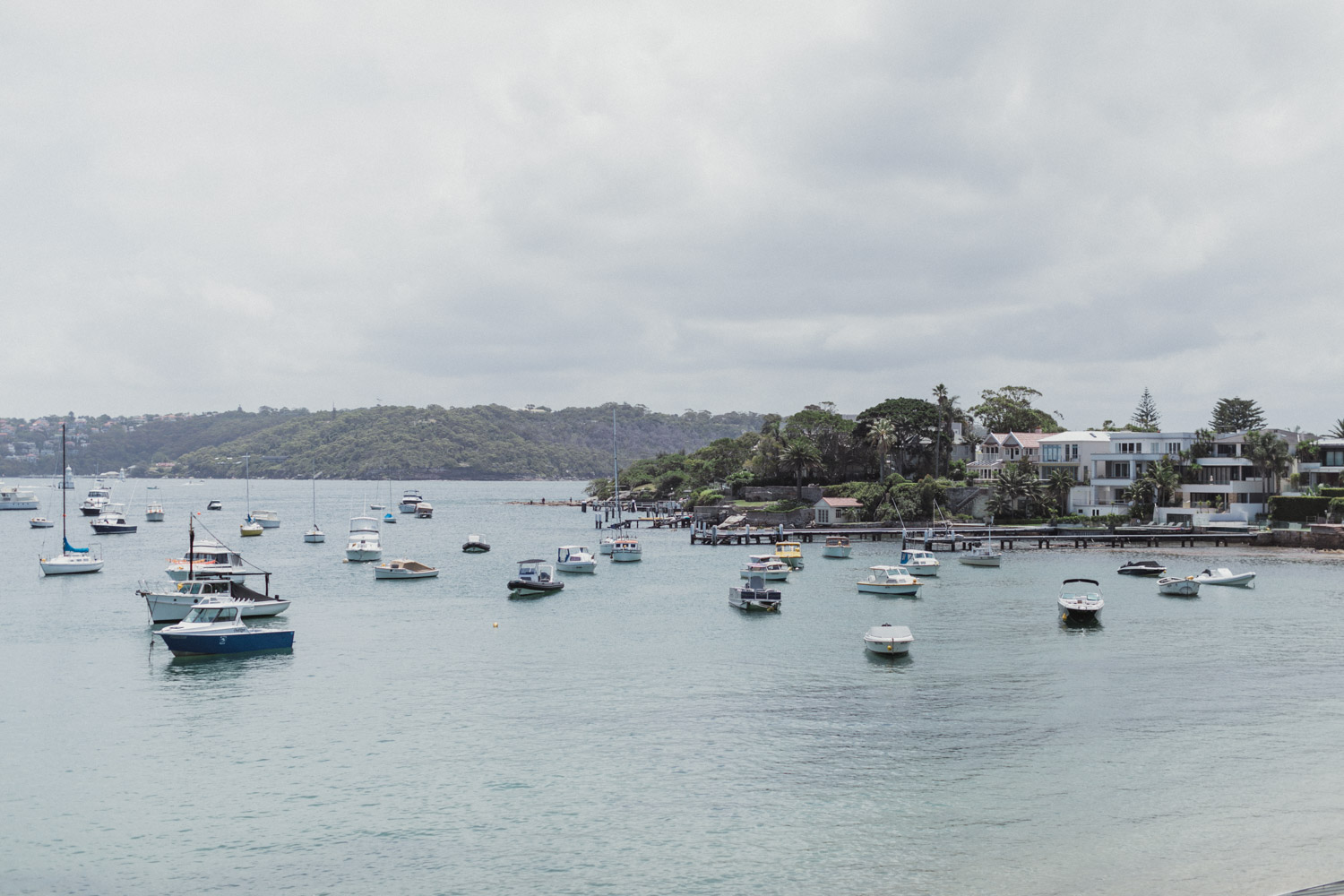 view from the watsons bay hotel